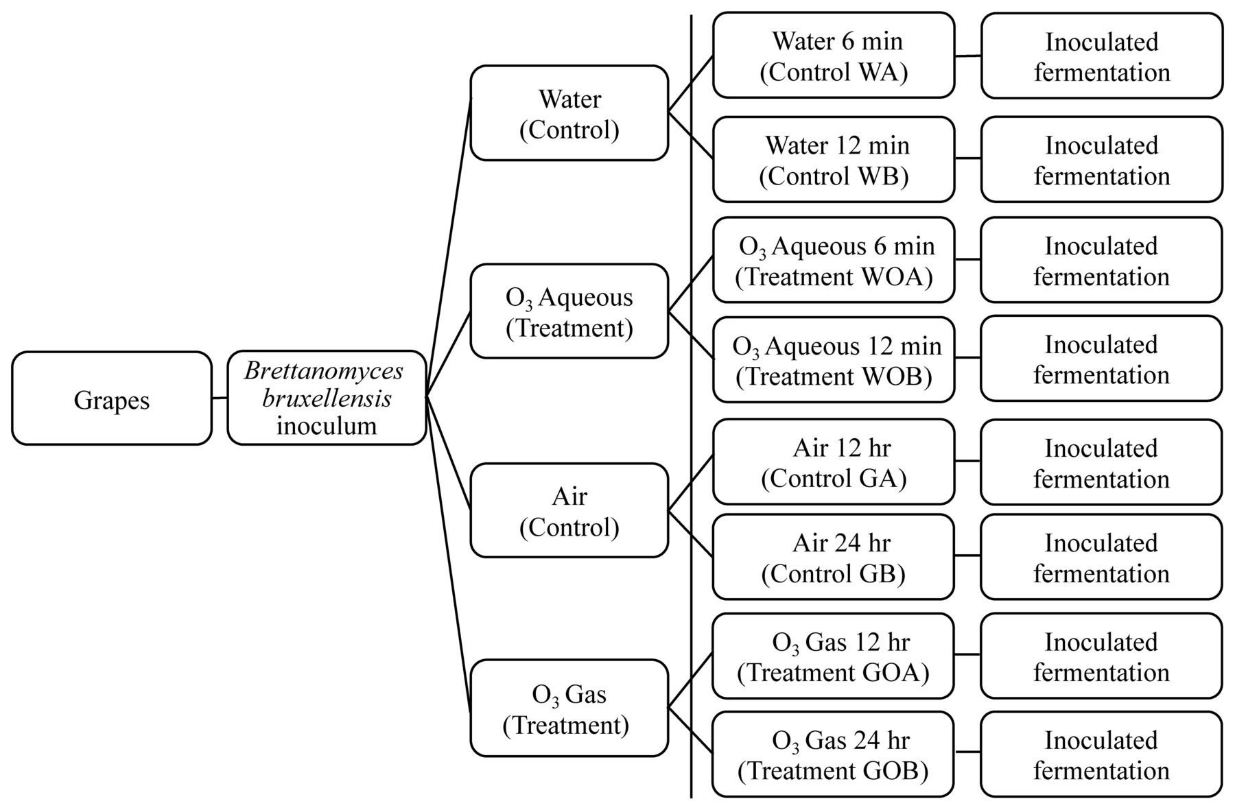 Efficacy of Ozone against Different Strains of Brettanomyces